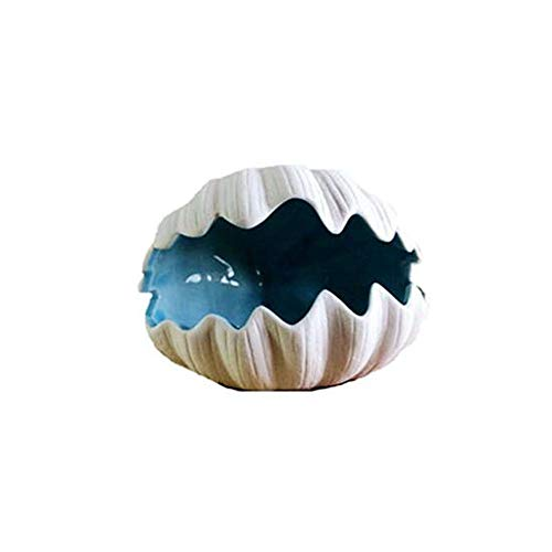 - Hongyuantongxun Home Decoration, Creative Shell Storage Ornaments, Foyer TV Cabinet Shoe Cabinet Decoration Desk Storage Tray Home Soft Decoration (Color : White, Size : 15.51213.5cm)