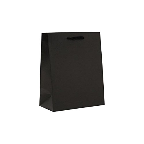 Kitchen & Housewares : Berwick J89082866 100 Count Black Solid Colored Bags