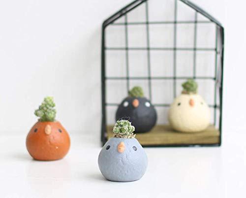 Set of 4 Bird Ceramic Planters in 4 Different Colors, Succulent Pots, Cute Bird Planter Pots, Animal Planter, Nursery Planters, Bird Gifts, Bird Flower Vase(Plants Not Include) ()
