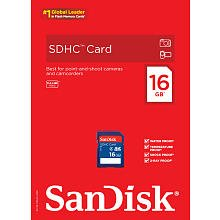 SanDisk 16GB Micro SD Memory Card (Retail Pkg)