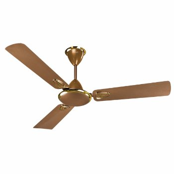 Buy V Guard Fan Coolgale Dx Online At Low Prices In India Amazon In