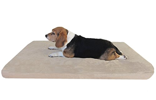 Orthopedic XLarge Waterproof Memory Foam Pad Dog Bed with Ta