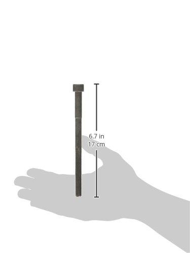 Beck Arnley 016-1038 Engine Cylinder Head Bolt Set