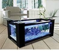 Buy Cheap Coffee Table Fish Tank Amazoncouk Garden