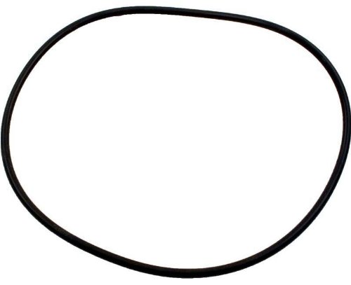 Zodiac R0555400 Pot Lid O-Ring Replacement for Select Zodiac Jandy JHP Series Pump ()