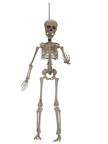 Realistic Halloween Props‎ Poseable Skeleton [89504]