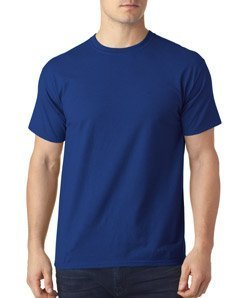 (Hanes Men's X-Temp Crewneck Short-Sleeve T-Shirt (XX-Large), Deep Royal)