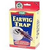 Earwig Traps