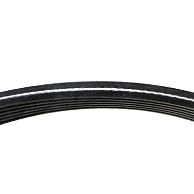 Continental D4060725 Dual-Sided Poly-V/Serpentine Belt: Automotive