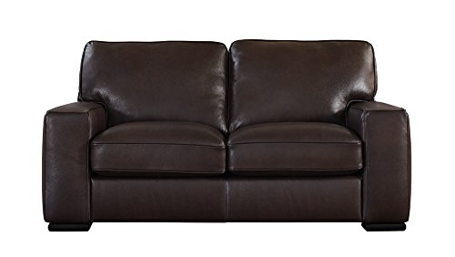 Matera Collection Brown Leather Stationary Loveseat - Collection Brown Leather Loveseat