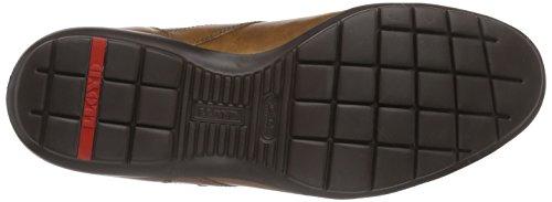 Braun Kenia Cigar 4 Herren Antonio Sneaker LLOYD tU7qw