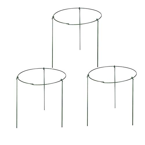 BoWen ( Pack of 3 Large Garden Plant Support Rings, 10