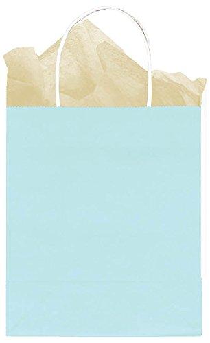 Amscan Party Friendly Plain Medium Kraft Bag, Light Blue, 10