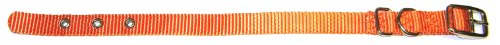 Hamilton 5/8-Inch by 14-Inch Single Thick Nylon Deluxe Dog Collar, Mango Orange