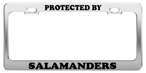 PROTECTED BY SALAMANDERS License Plate Frame Tag Holder Car Truck (Salamander Frame)