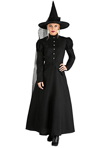 Fun Costumes Women's Deluxe Wicked Witch Costume Large ()