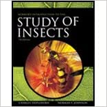 Borror and DeLong's Introduction to the Study of Insects by Johnson, Norman F., Triplehorn, Charles A.. (Cengage Learning,2004) 7th Edition
