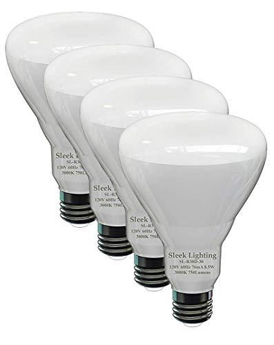 Flood Light Bulb Disposal in US - 7