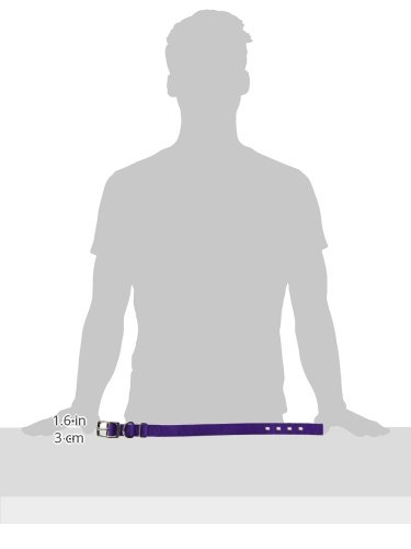 Image of Hamilton Double Thick Nylon Deluxe Dog Collar, 1-Inch by 20-Inch, Purple