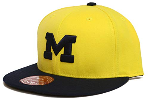 Mitchell & Ness Michigan Wolverines 2 Tone Fitted Hat (7 1/2)