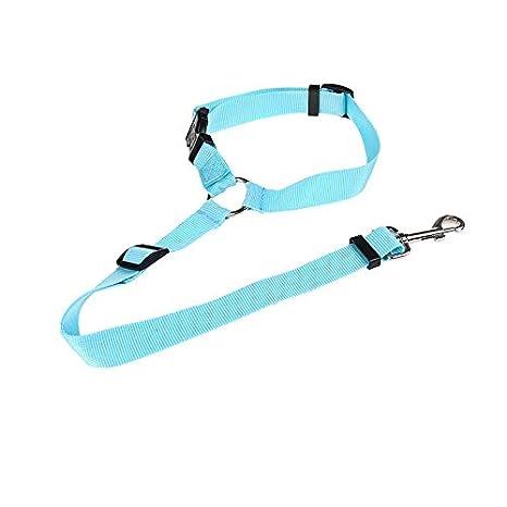 Arnés y Lleash Cinturón de seguridad for mascotas Cinturón de ...