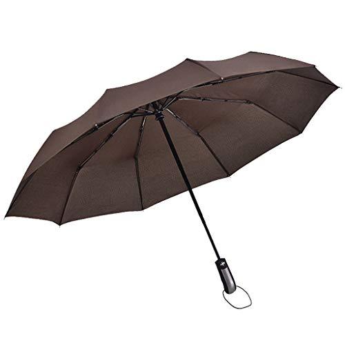 AIEason 10 Ribs Automatic Opening/Closing Weatherproof Umbrella, Waterproof Travel Umbrella, Portable Umbrella, with Ergonomic Handle