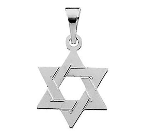 LooptyHoops Small 14K Gold Star of David Charm Pendant (17mm - White Gold) (Jewish Religious Pendant Gold White)