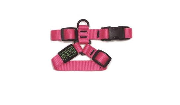 TODOPETS PETRAL 15 MM Pink BUBS Cuello 17-28 Cuerpo 25-36: Amazon ...