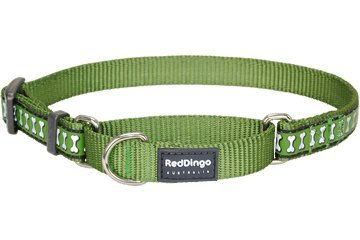 Red Dingo Reflective Martingale Dog Collar, Medium, Green