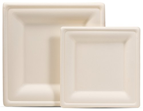 Select Settings [100 COUNT] Compostable eco-friendly Square Plates 50 dinner plates and 50 dessert plates made from wheat straw fiber bagasse (sugarcane) -