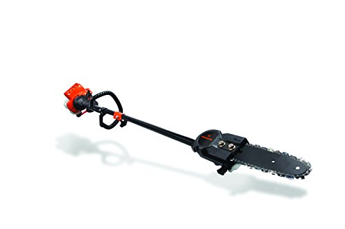 Remington RM2599 Maverick 25cc 2-Cycle 8-Inch Gas Pole Saw (Pole Trimmer Saw)