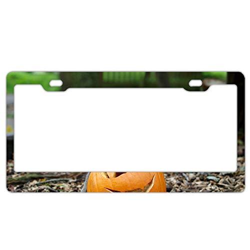 KSLIDS Animal Monkeys Halloween License Plate Frame/Inspired License Plate Frame Waterproof Mental