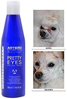 Artero Pretty eyes, antes y después caniche blanco
