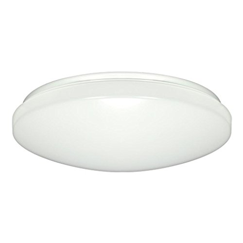 Nuvo Lighting 62/547 LED Flush Mount ()