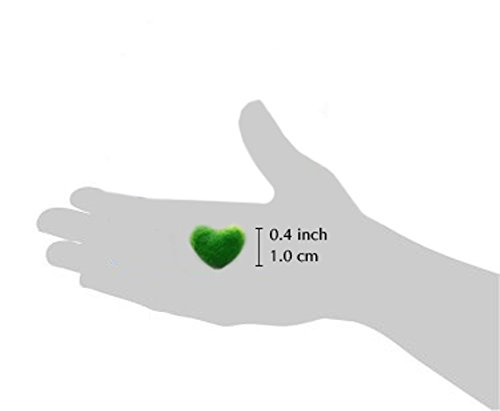 Luffy Heart Marimo - Unique Heart-shaped Rare Live plant that brings good luck, charm & prosperity - Perfect gift for Every Occasion - Win Someone's Heart today!