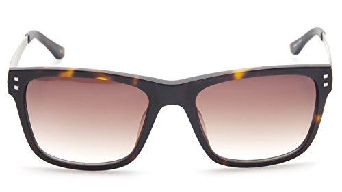 NEW PRODESIGN 8632 c.5534 HAVANA BROWN SUNGLASSES CAT.3 57-19-140 II B44mm - Prodesign Sunglasses