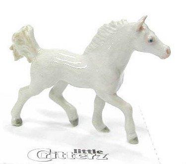 HORSE AMERICAN SADDLEBRED White
