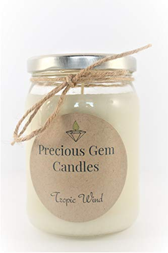 Tropic Wind - Soy Candle with A Gemstone Inside (Surprise Semi-Precious Faceted Gemstone Valued $10-$5,000) ()