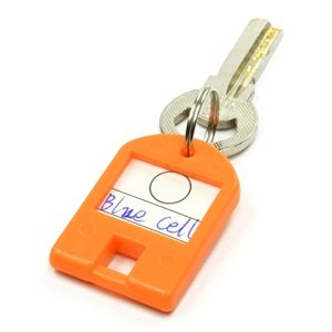 Bluecell Pack of 10 Assorted Color Coded key Tag with Label Window Plastic Ring