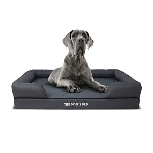 The Dog's Bed Orthopedic Dog Bed XL Grey 43.5x34, Premium Memory Foam, Pain Relief: Arthritis, Hip & Elbow Dysplasia, Post Surgery, Lameness, Supportive, Calming, Waterproof Washable Cover