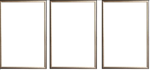 Three(3) Wood Metallic Gold Finish Poster Frame 24x36 or 36 x 24 by Generic