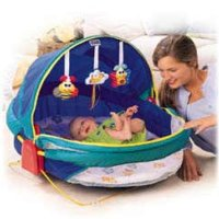 Fisher Price Bounce n Play Activity Dome  sc 1 st  Amazon.com & Amazon.com : Fisher Price Bounce n Play Activity Dome : Infant ...