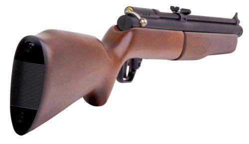 Benjamin 392 Bolt Action Variable Pump Air Rifle ( 22
