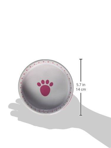 Pet Rageous 2 Cup Confetti Dots Bowl, 5'', Pink/Multicolor