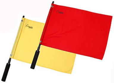 Champion Sports Official Solid Flag