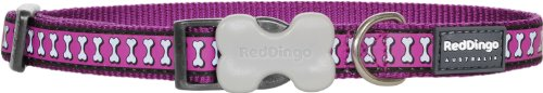 Red Dingo Reflective Dog Collar, Small, Purple