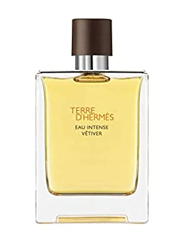 Hermes Terre D hermes Eau De Toilette Spray For Men, 3.4 Ounce Plain Box