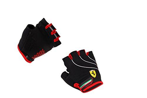 Ferrari Gloves  Multicolor  X Large