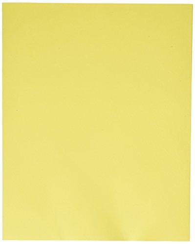 Oxford 5012670 Esselte Pendaflex Heavy Duty Jumbo Pocket Folder, 2 Pockets, 12