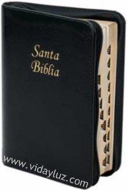 Biblia Pequena Con Letra Grande-RV 1960 (Spanish Edition)